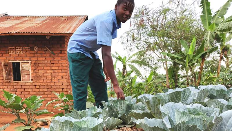 Uganda: Escaping poverty through farming